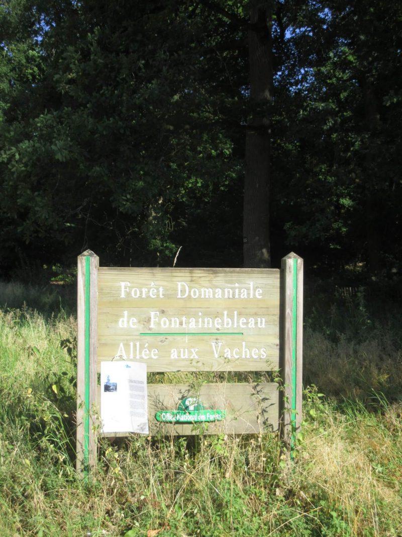 フォンテーヌブローの森 入口