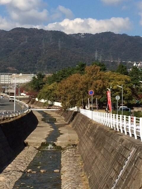 神戸 石屋川と六甲山