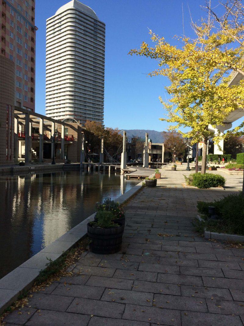神戸 六甲アイランドの公園と建物